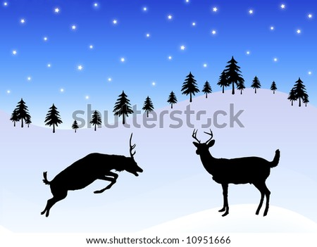 deer playing in the snow