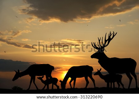 Deers herd silhouettes on sunset background - stock photo