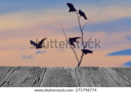 Defocus and blur image of old wood and Silhouette bird at sunset for background usage - stock photo