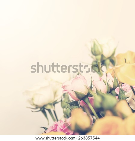 Defocus bunch of roses. flower with soft pastel color filter - stock photo