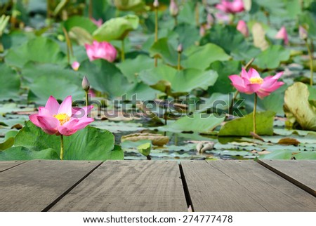 Defocused and blur image of terrace wood and beautiful pink flower lotus in the pond for background usage - stock photo