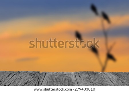 Defocused and blur image of terrace wood and Silhouette bird at sunset  for background usage  - stock photo