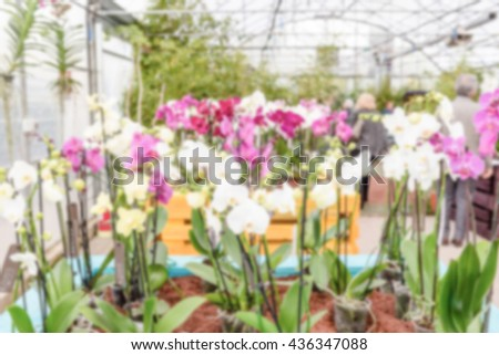 Defocused background with beautiful colorful mix of phalaenopsis orchids. Intentionally blurred post production for bokeh effect - stock photo
