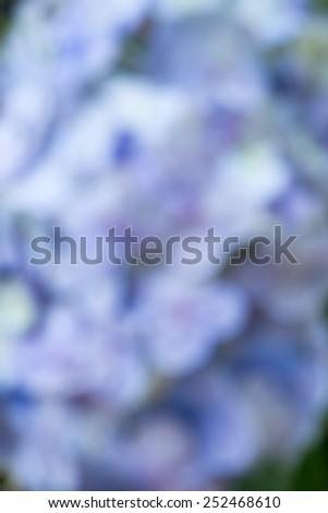 Defocused blue and purple - stock photo