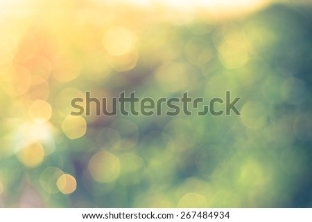 Defocused Bokeh, twinkling lights vintage blurred bokeh abstract light spring forest background. Natural bokeh from leaf tree. Blur picture style. - stock photo