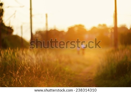 Defocused path on sunset, natural bokeh background  - stock photo