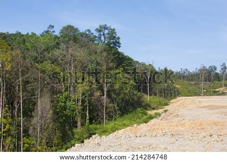 Deforestation Environmental Problem  - stock photo