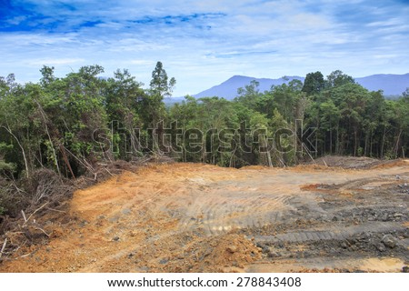 Deforestation environmental problem as rain forest jungle destroyed for human development - stock photo