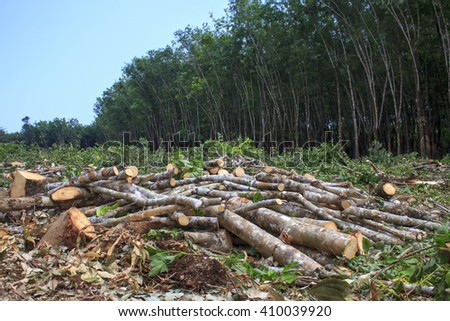 article global deforestation A review by the millennium ecosystem assessment — the most authoritative assessment of the causes, composition, and consequences of global deforestation — concluded that the world ' s global forest area has shrunk by over 40 percent in recent centuries.