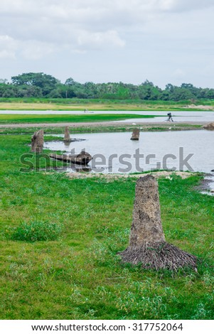 Deforestation is the big problem in Thailand - stock photo