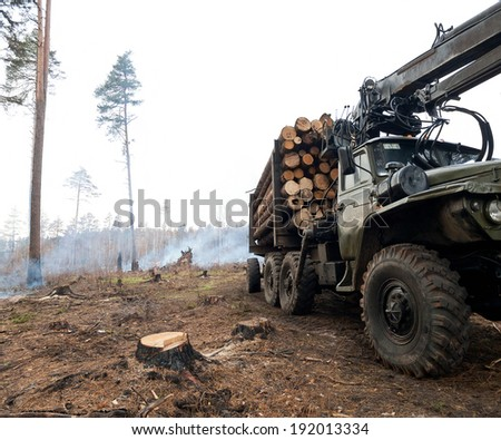 Deforestation, logging industry. - stock photo