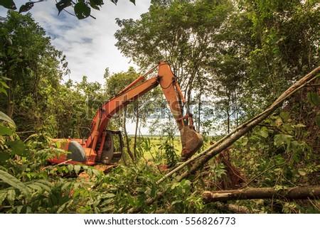 Deforestation Rainforest Stock Images, Royalty-Free Images ...