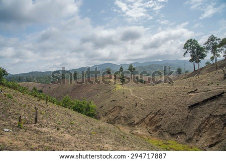 Deforestation on the mountain for agricultural at Tak province in Thailand.