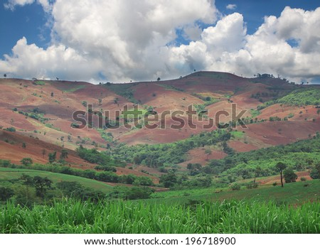 Deforestation on the mountain for agricultural in Thailand. - stock photo