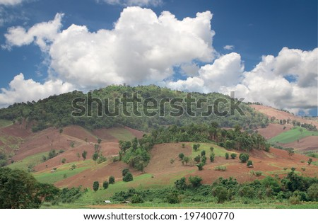 Deforestation on the mountain for agricultural in Thailand - stock photo