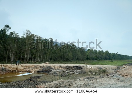deforestation to create more land for agriculture and farming - stock photo