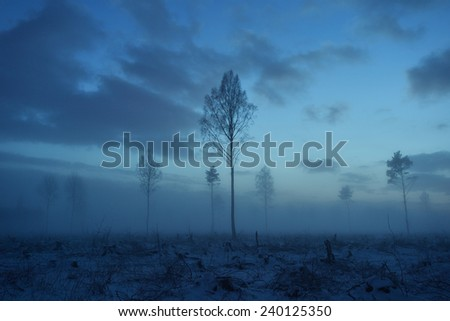 Deforested area at twilight, clouds in the sky - stock photo
