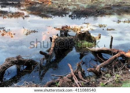 deforested landscape - Ecology and Environment issue - stock photo