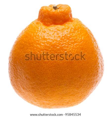 fruit slicer hybrid fruits