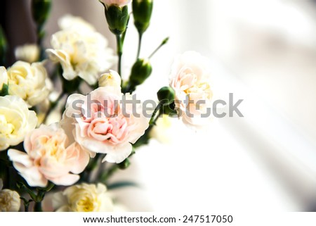 delicate bouquet of carnations in vintage style - stock photo