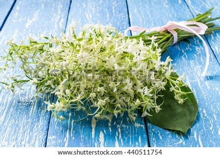 Delicate bouquet of wild orchids, also known as Lesser Butterfly Orchid (Platanthera bifolia) on a blue wooden table - stock photo