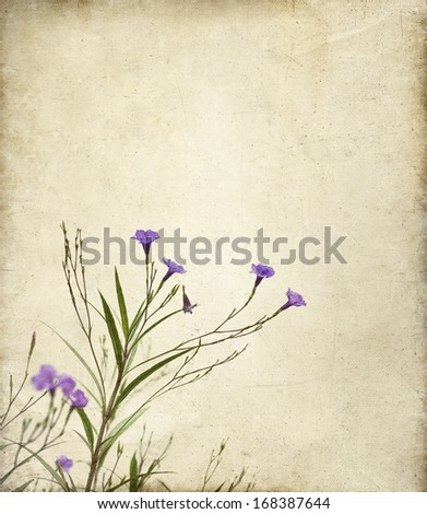 Delicate purple Ruella flowers on a textured canvas background with a painterly feeling. Useful for mother's day, valentine's, greeting card, something feminine. - stock photo