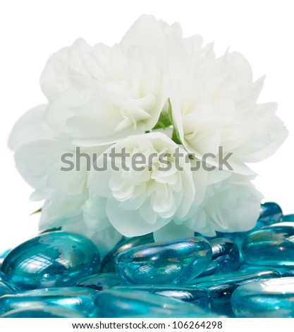 Delicate White Jasmine Flowers on Blue Glass Stones - stock photo