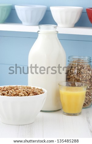 Delicious and healthy crunchy oats cereal. - stock photo