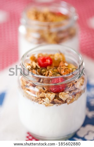 delicious and healthy yogurt with granola - stock photo
