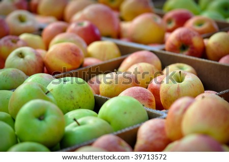 Delicious Apples in a Box ready to be purchased