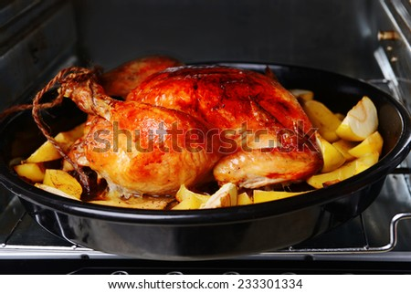 Delicious baked chicken in oven close-up