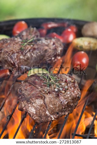 Delicious beef steak on garden grill, close-up