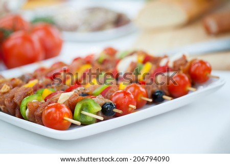 Delicious colorful meat skewers on summer barbecue party