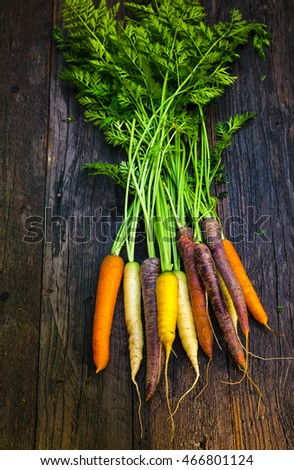 Delicious colorful rainbow carrot with leaves on wooden table, healthy food and diet concept