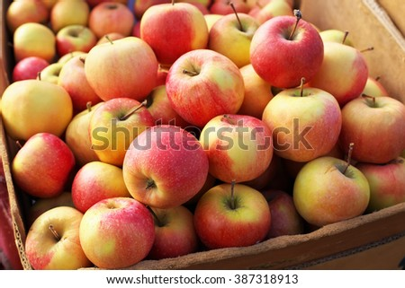 Delicious colorful sweet-sour apples in the box on the market