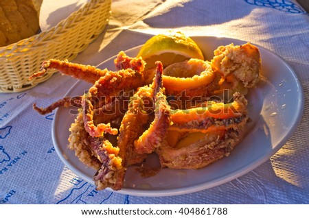Delicious deep-fried squids in greeks style - stock photo