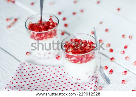 Delicious dessert pannacotta with fresh pomegranate seeds in a glass jar on white background - stock photo
