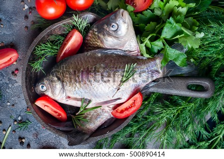 Raw sparus aurata gilthead bream fish stock photo for Aromatic herb for fish
