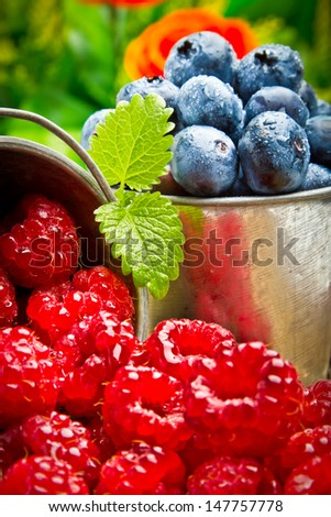 Delicious fruit berries in metal small pail - stock photo
