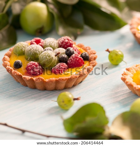 Delicious fruit tart made with raspberries, gooseberries and blueberries. Shallow DOF. - stock photo