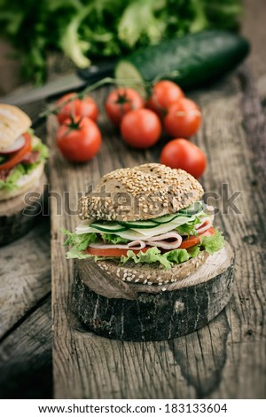 Delicious ham, cheese and salami sandwich with vegetables, lettuce, cherry tomatoes in natural setting with wooden background - stock photo