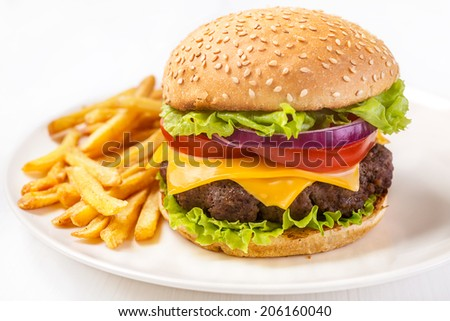Delicious Hamburger with French Fries - stock photo
