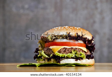 Delicious hamburger with onion lettuce and tomato