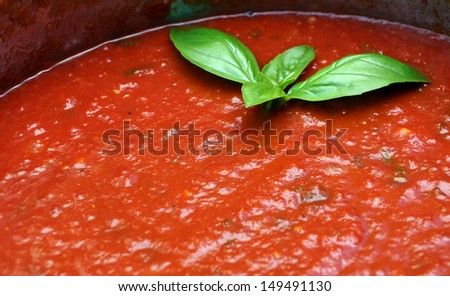 Delicious home made tomato sauce is ready to be served over the pasta