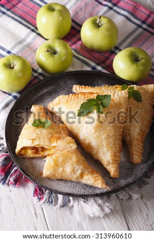Delicious homemade pie turnover with apples and raisins close-up on a plate. Vertical