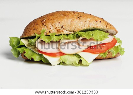Delicious long sandwich on the table
