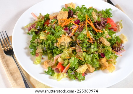Delicious mixed leafy green lettuce and herb salad with fried crunchy croutons served on a plate at table as a vegetarian main course or accompaniment - stock photo