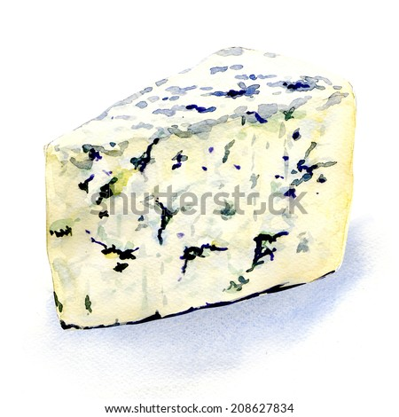 delicious mold cheese on a white background - stock photo
