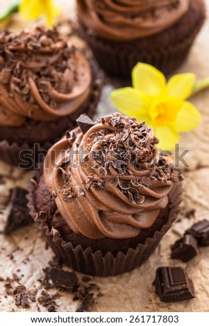 Delicious Mothers day  chocolate cupcakes  with spring flowers