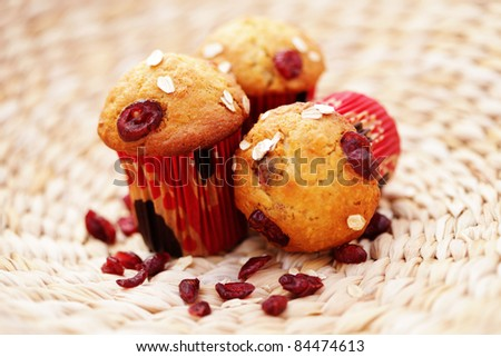 delicious muffins with cranberries - sweet food /shallow DOF/ - stock photo